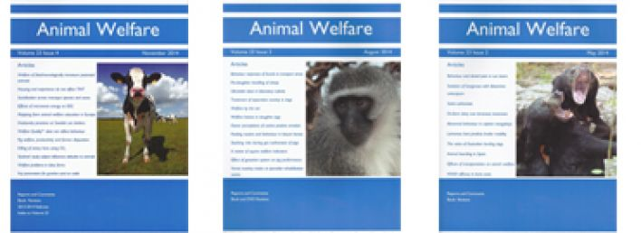 research essays on animal rights Essays, term papers, book reports, research papers on zoology free papers and essays on animal rights we provide free model essays on zoology, animal rights reports, and term paper samples related to animal rights.